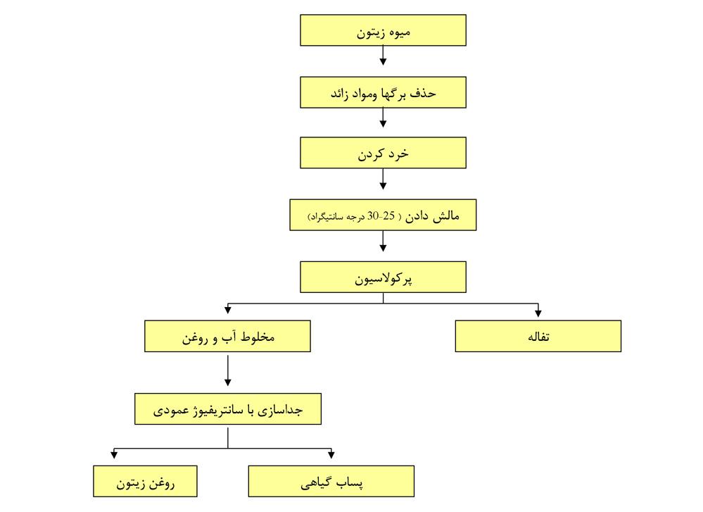 مراحل استخراج روغن به روش پرکولاسیون