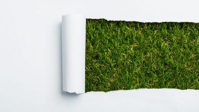 Photo of طرح تولید خمیر کاغذ از ضایعات گیاهی