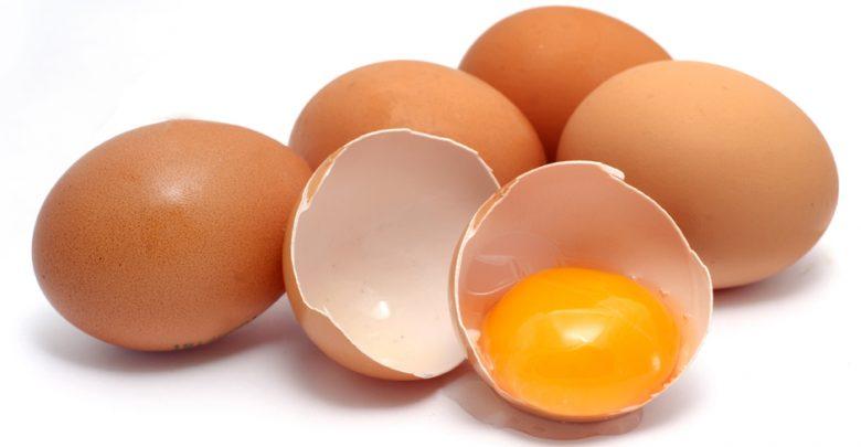 ایده تولید تخم مرغ نطفه دار با بازدهی عالی