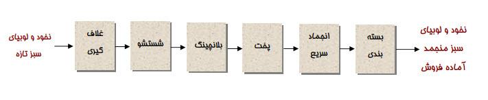فرایند تولید لوبیا و نخود سبز