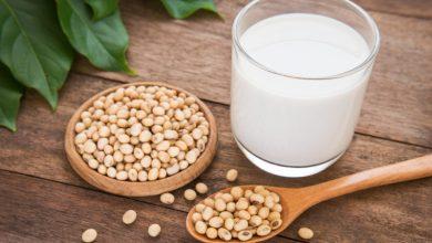 Photo of طرح تولید شیر سویا