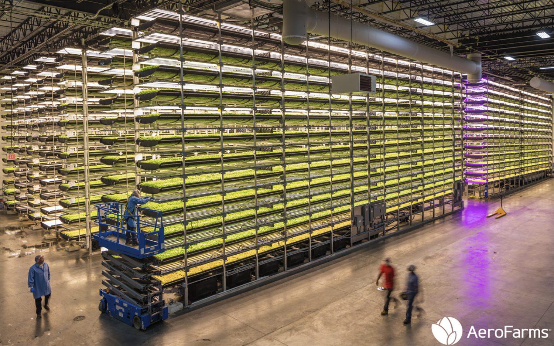 کشاورزی به روش هیدروپونیک