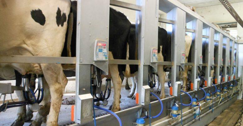 Milking 780x405 - طرح تولید شیر دوشهای صنعتی