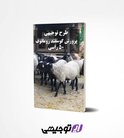 طرح توجیهی پرورش گوسفند رومانوف ۵۰ راس