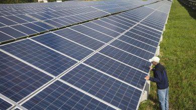 Photo of تولید انرژی و غذا در مزارع خورشیدی