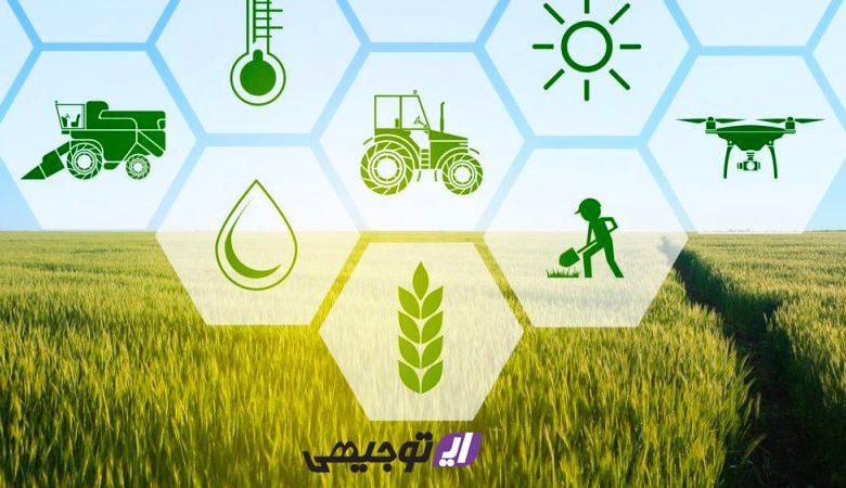 برای راه اندازی کار در بخش کشاورزی از کجا شروع کنیم؟